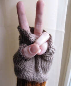 Friendly brown gloves 1.jpg