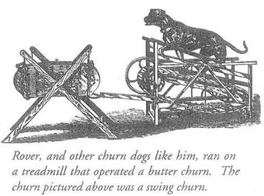 Hanford Mills newsletter dog treadmill illustration