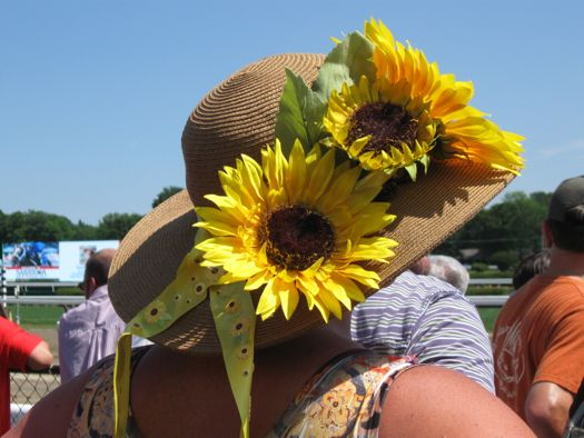 HatDay - Sunflower.jpg