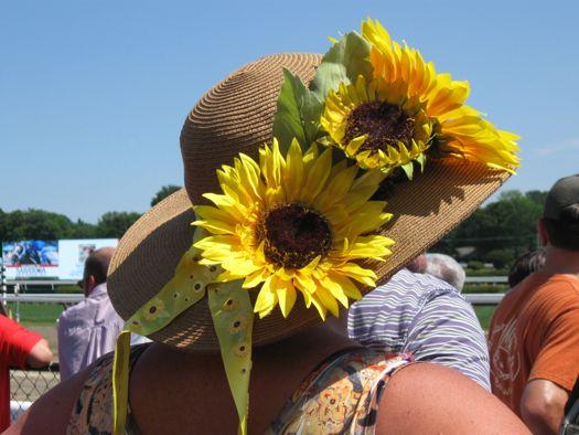 HatDay - Sunflower.jpg