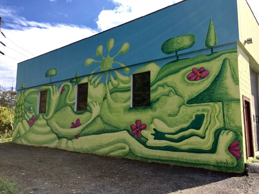 Helderberg-Hudson rail trail mural in Delmar by Andrea Hersh