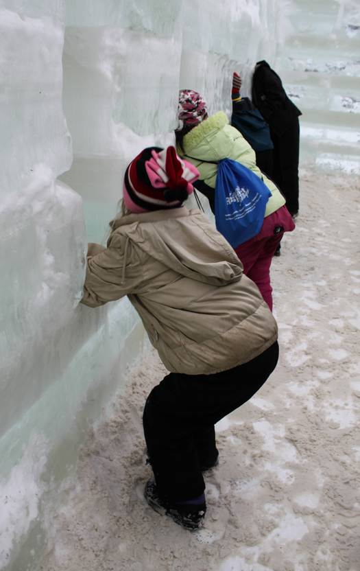 Ice Palace Window Kids