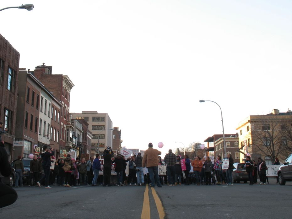 Inaugurate_resistance_march_Albany_16.jpg