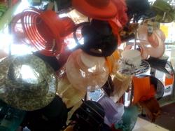 Ladies hats 2.jpg