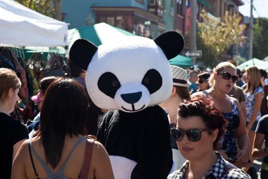 LarkFEST_2010 panda