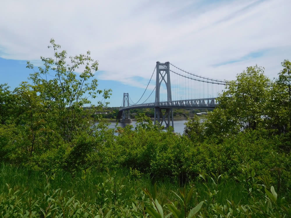 Mid-Hudson_Valley_Julie_Madsen_franny_reese_state_park_ny.jpg