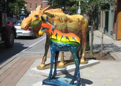 Moose in Bennington.jpg