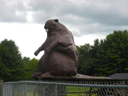 Odd_museums_attractions_big_beaver.jpg