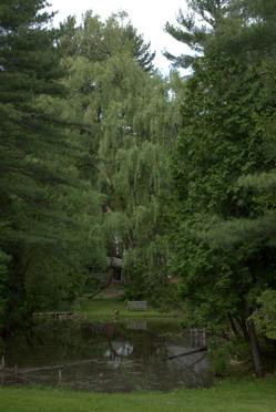 Pine hollow 9.jpg