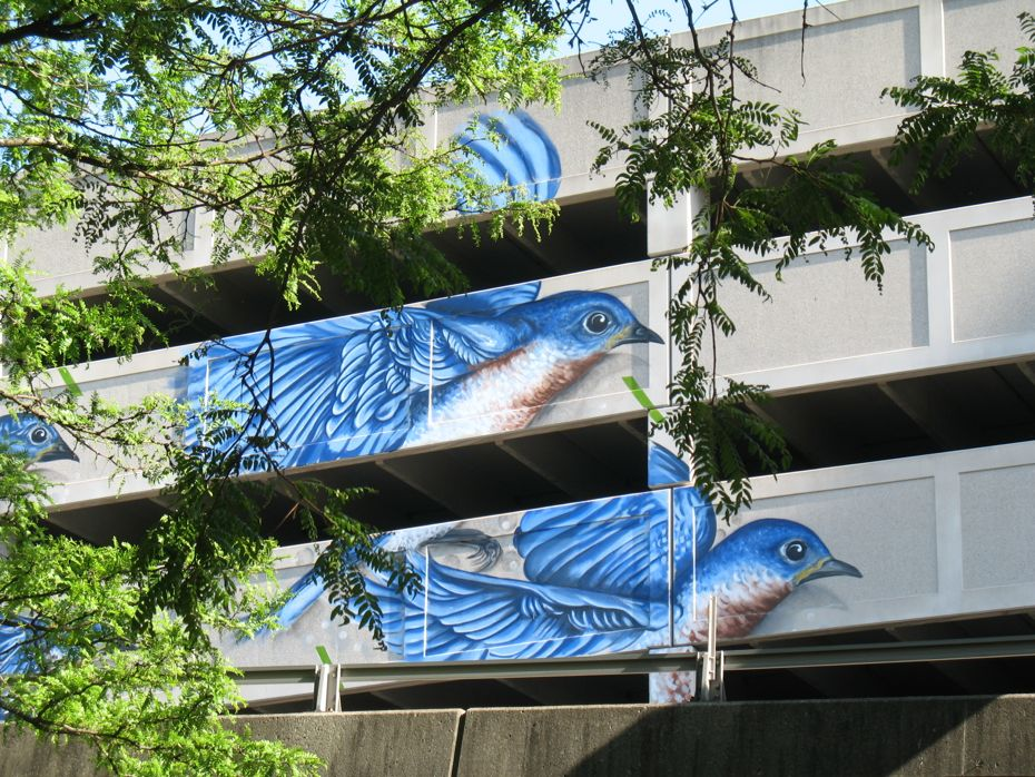Quackenbush Parking Garage blue bird mural