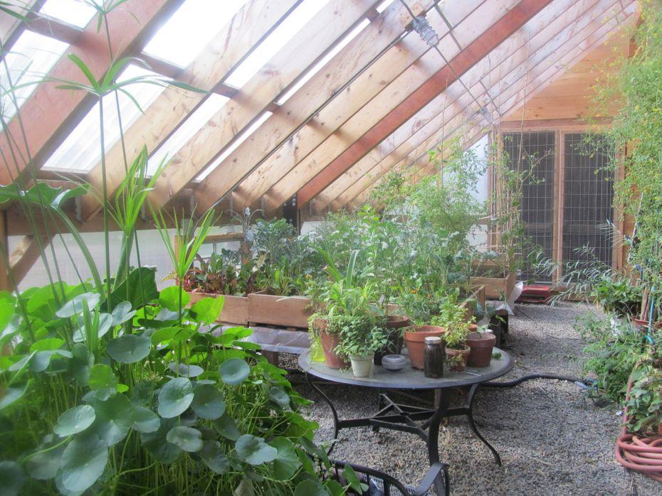 Radix Greenhouse interior 2.jpg