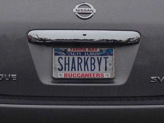 SHARKBYT.jpg