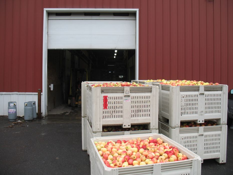 Samascott_Orchard_apple_storage_02.jpg
