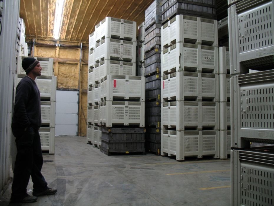 Samascott_Orchard_apple_storage_06.jpg