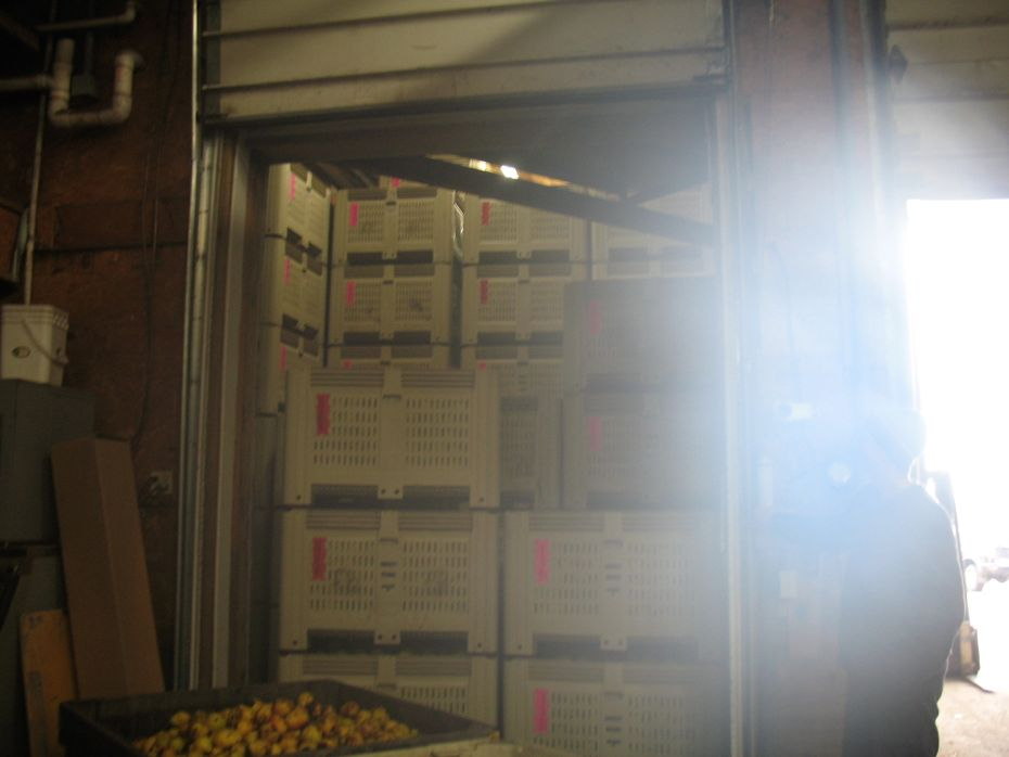 Samascott_Orchard_apple_storage_07.jpg