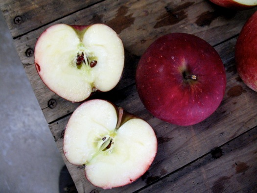 Samascott_Winesap_apple.jpg