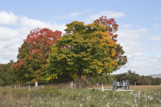 fall foliage and cannon at Saratoga National Historic Park