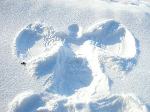 Snow Angel.jpg