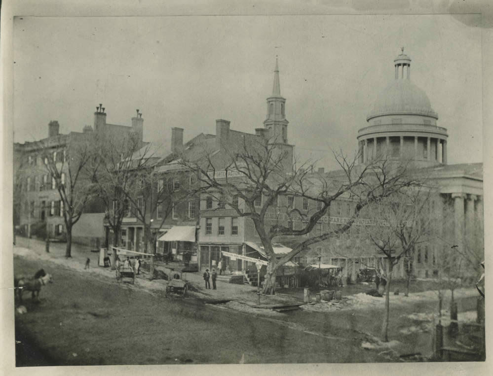 State and Pearl Albany elm tree 1849