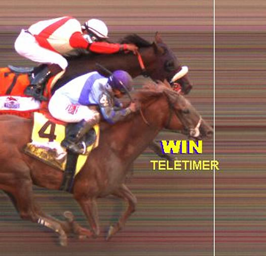 Travers 2014 photo finish