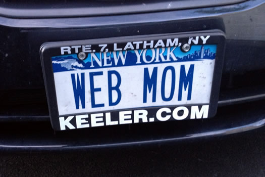WEB_MOM_komradebob.jpg