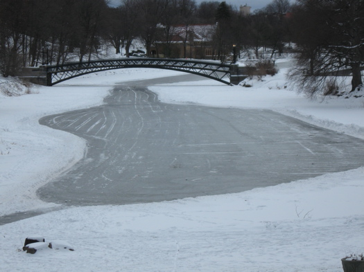 Washington Park Lake - Frozen.JPG