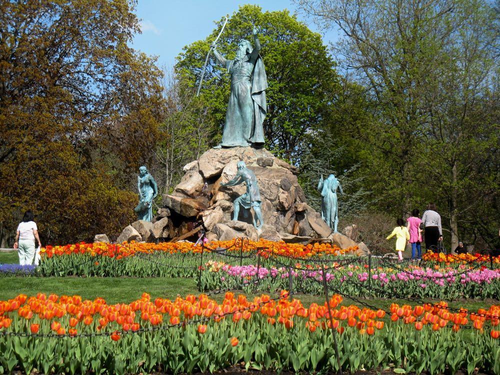 Washington Park tulips 2017