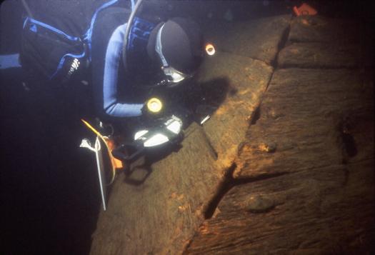 Zarr w shipwreck.jpg