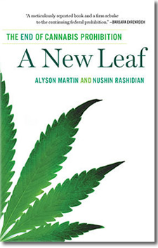a new leaf book with dropshadow
