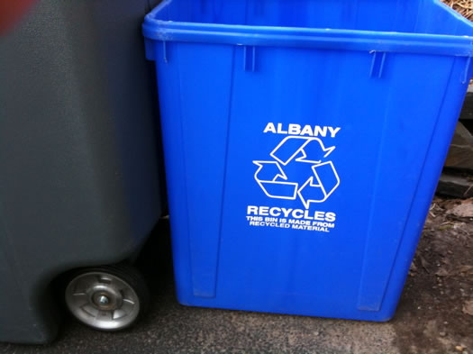 albany blue recycling bin