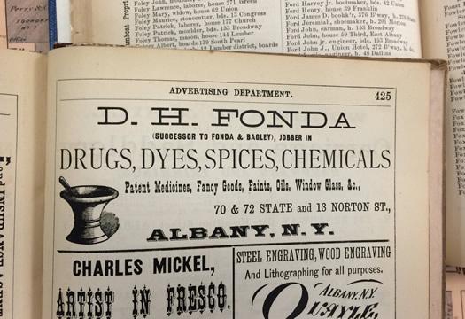albany directory 1875 D H Fonda drugs