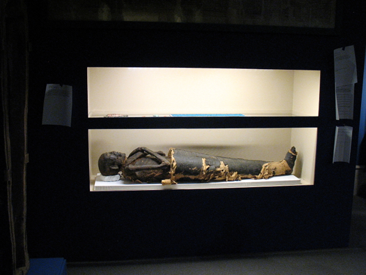 albany_institute_mummies23.jpg