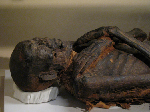 albany_institute_mummies24.jpg
