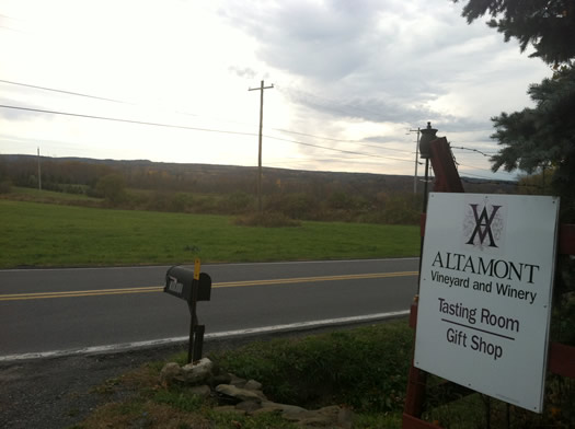altamont_vineyard_road.jpg