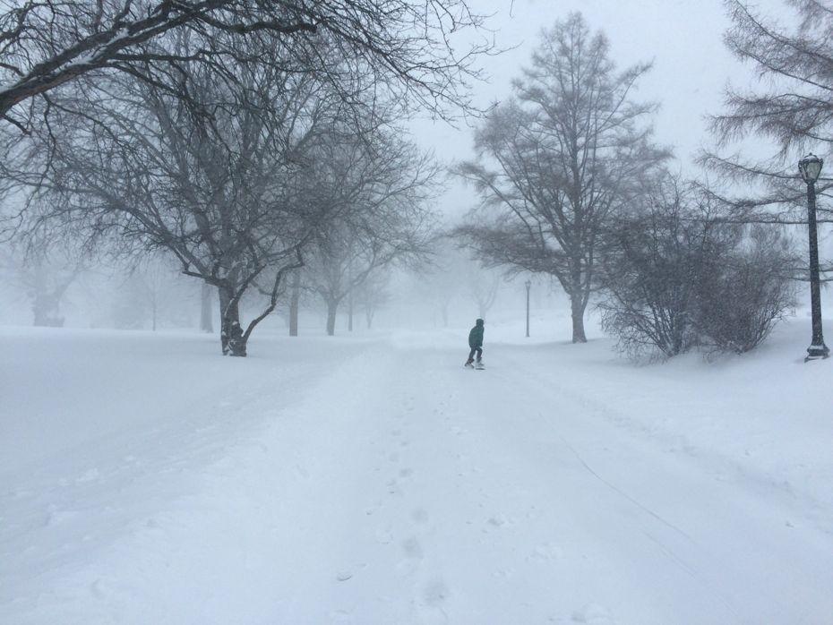 blizzard_Albany_2017_18.jpg