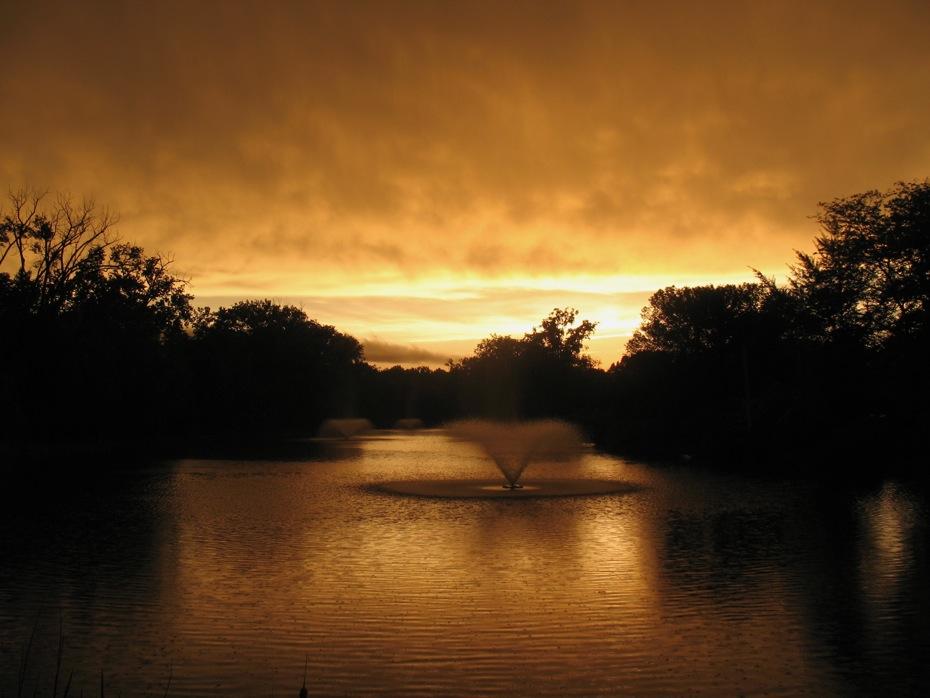 buckingham pond 2013-05-29 yellow light