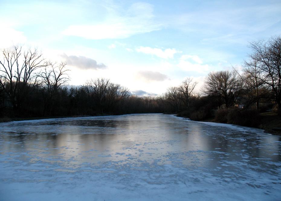 buckingham pond february 1 2013