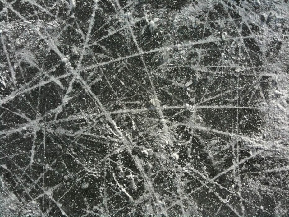 buckingham_pond_skate_traces_2.jpg