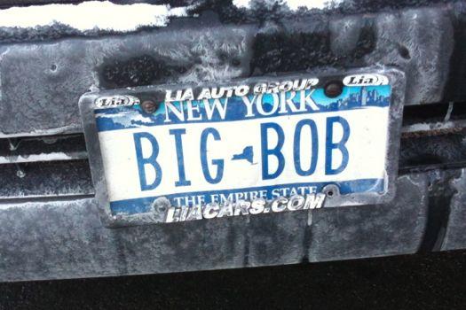 bumper_gawking_BIG_BOB.jpg