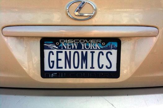 bumper_gawking_GENOMICS.jpg