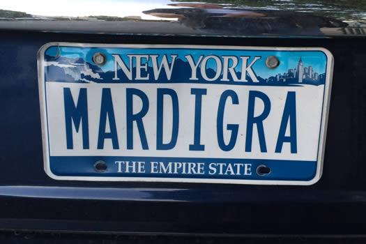 bumper_gawking_MARDIGRA.jpg
