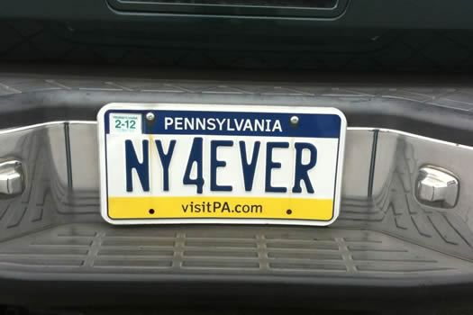 bumper_gawking_NY4EVER.jpg