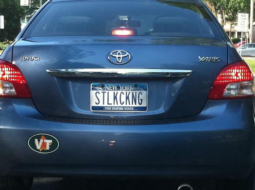 bumper_gawking_STLKCKNG.jpg