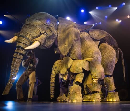 Circus Elephant Puppets