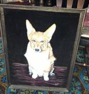 craigslist corgi portrait