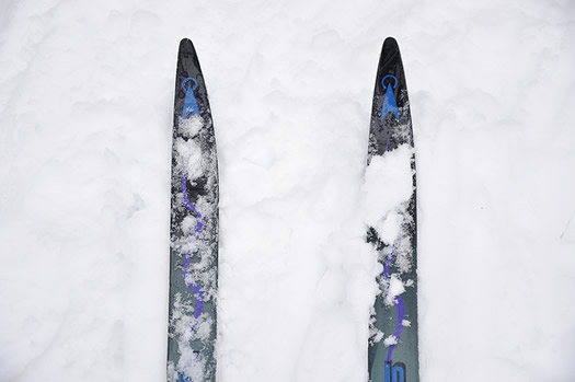 cross country skis look down