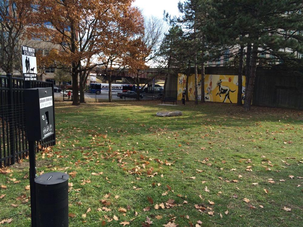 downtown_Albany_dog_park_2.jpg