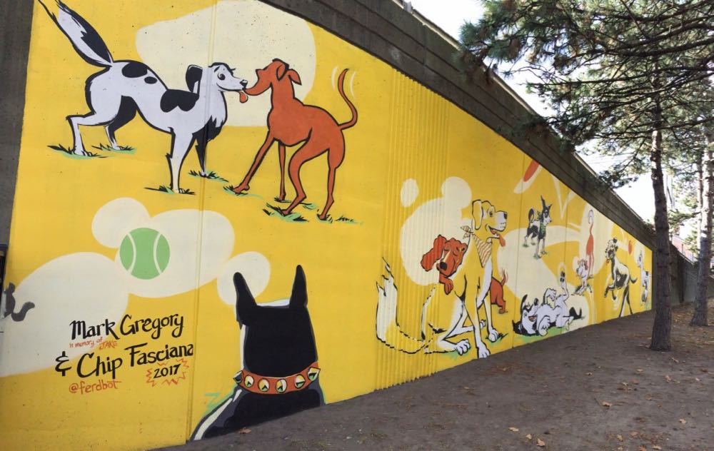 downtown_Albany_dog_park_4.jpg