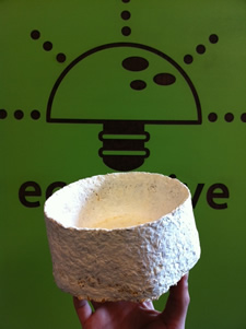 ecovative myco bowl