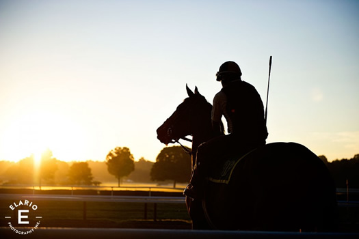 elario photography saratoga race course sunrise